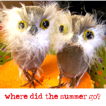 Where-did-the-summer-go