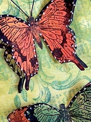 Butterfly-defined-rubber-st