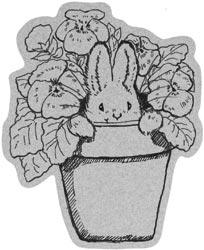 PennyBlack-Cute!