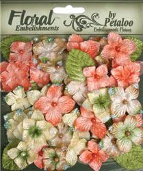 Petaloo-flowers!
