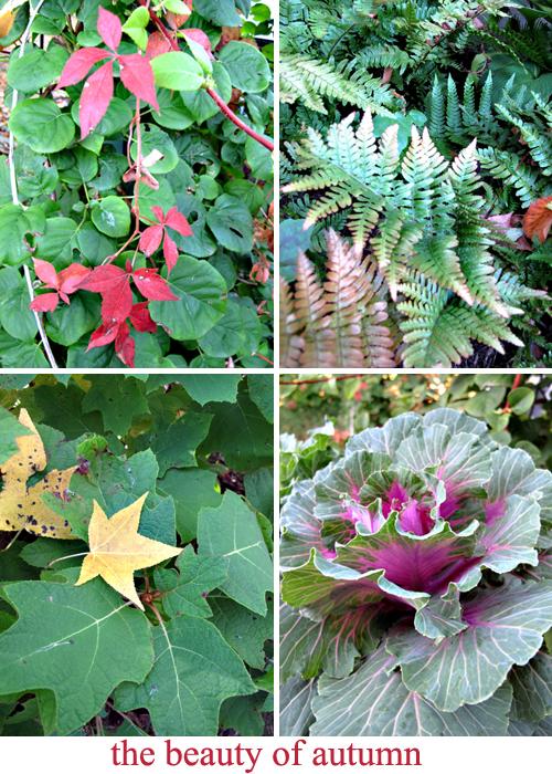 Autumn-garden