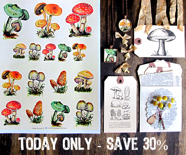 Today-Only-MushroomMonday!