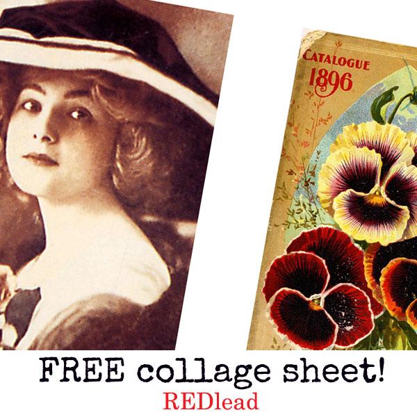 Free-beautiful-collage-shee