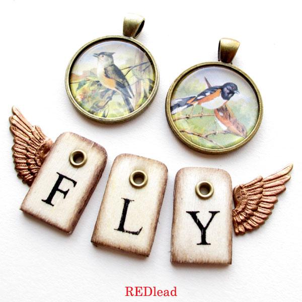 Bird-charms-fly