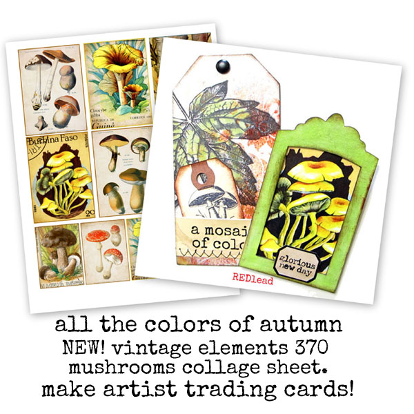 Mushroom-artist-trading-car