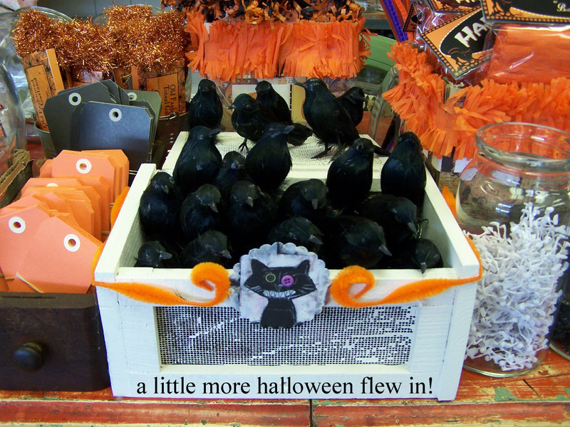 A_little_more_halloween_flew_in